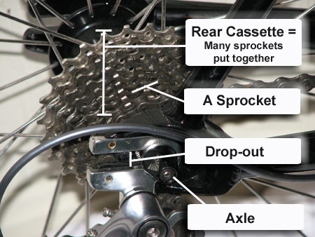 VIDEO: Removing the Rear Wheel from your Bike