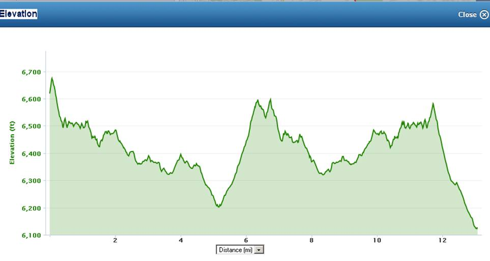dirty 1/2 Mary elevation profile